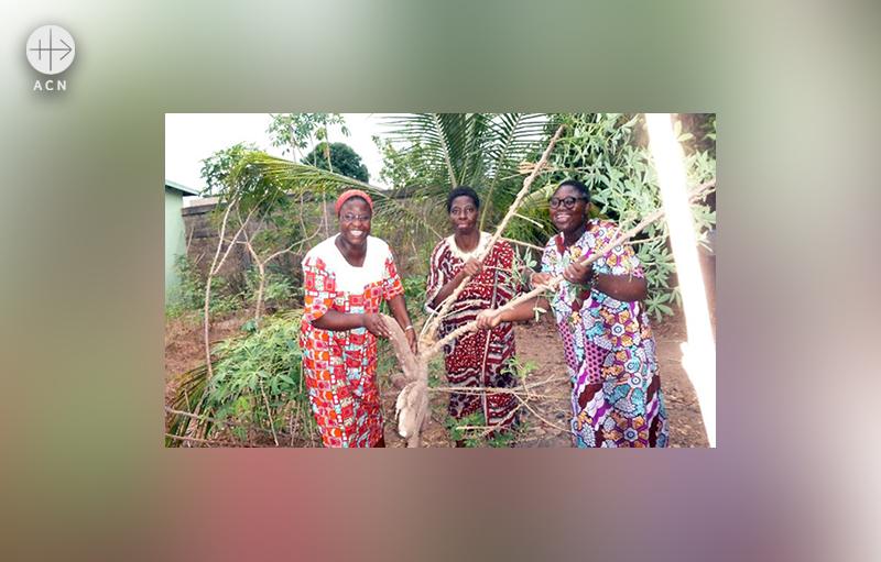 마녹뿌리밭에서 헬렌 수녀와 에피파니 수녀, 헤르미오네 (출처=ACN자료사진)