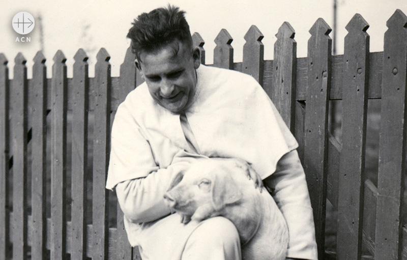 1951년, 돼지를 안고 있는 베렌프리트 판 슈트라텐 신부(출처=ACN 자료사진)
