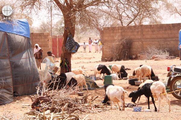 카야의 국내 실향민 캠프 (출처=ACN 자료사진)