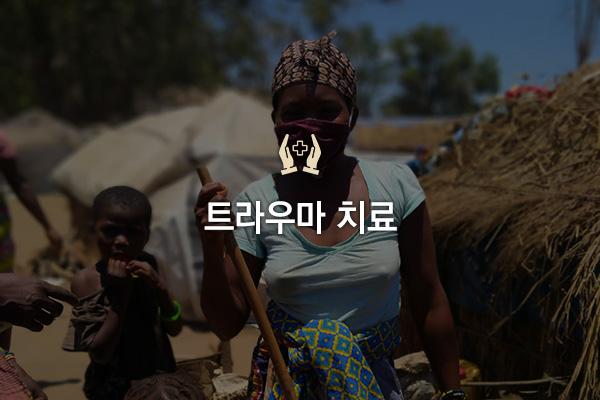 project-mozambique1